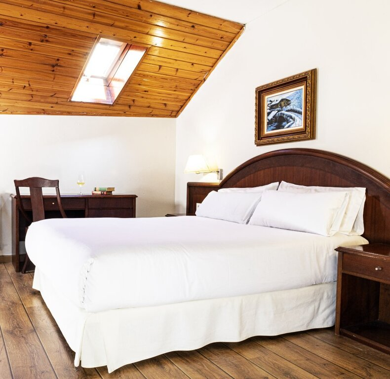 Standard Attic Room (Double Bed)
