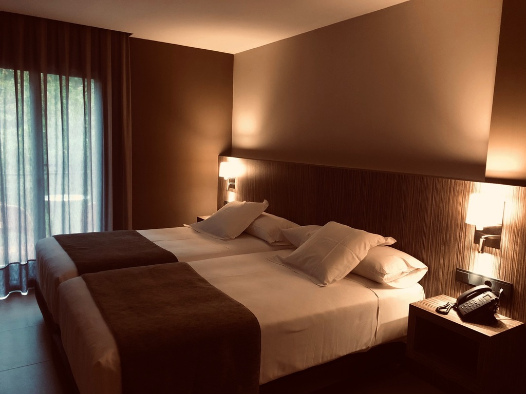 Superior Double Room (Double bed or 2 beds)