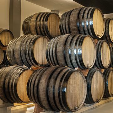 Gastronomic Experience of the Grape of Alicante
