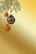 Christmas Brunch Offer